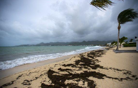 statistiques cyclones température eaux force ouragan Irma dément lien