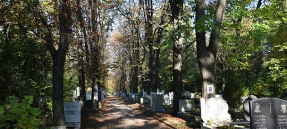 Bulgarie perdu population 2016