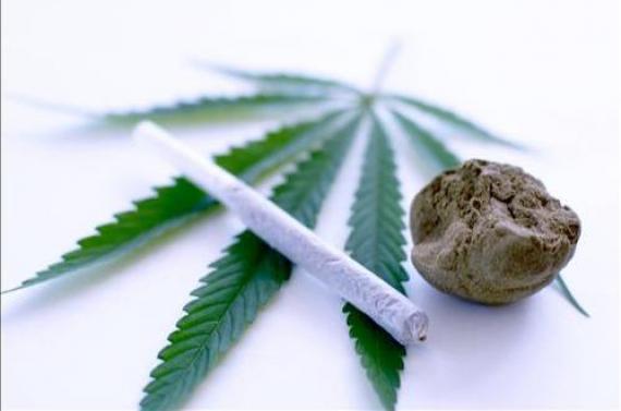 consommation cannabis violence prédicteur