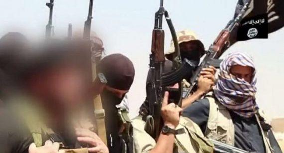 djihadistes français allocs Syrie