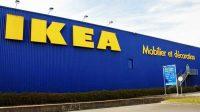 Le lien entre Ikea et la monarchie britannique: le meuble en kit