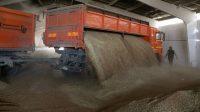 La Russie revendique la première place sur le marché des céréales