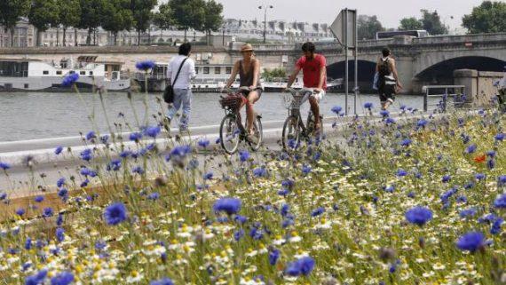Voies Berges Paris Augmente Embouteillages Pollution Rapport Officiel Fermeture