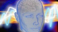 Transhumanisme: la société Kernel travaille sur une micropuce implantable dans le cerveau qui permettrait notamment la communication par télépathie