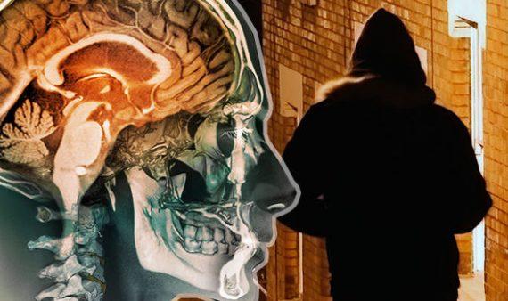 prédateurs sexuels micropuce implantée cerveau chercheurs