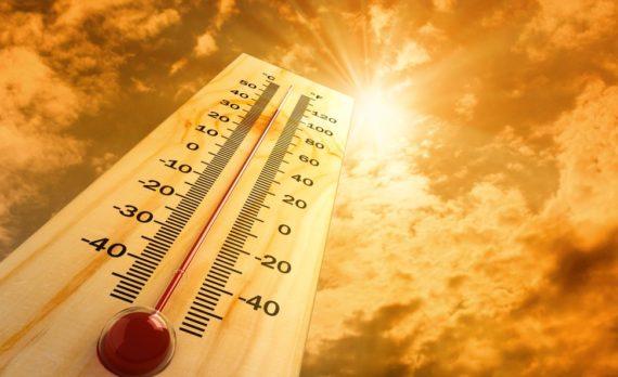 2017 année chaude El Niño changement climatique