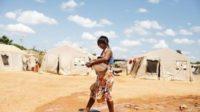 La FAO célèbre les femmes indigènes, «gardiennes des semences»