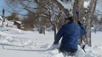 Nouvelles du réchauffement climatique au nord des Etats-Unis