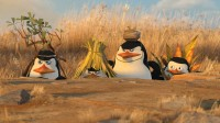 EnfantsLes Pingouins de Madagascar2♥♥