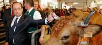 François Hollande confond agriculture et écologie