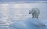 Scandale scientifique: l'«ajustement» des températures au service de la peur du «réchauffement» et la question de la fonte des glaces arctiques
