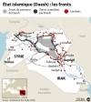 L'Irak s'entend avec l'Iran: offensive des forces sunnites et chiites contre l'Etat islamique pour reprendre Tikrit