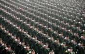 Rapport du SIPRI sur l'armement mondial: les États-Unis sont toujours premiers, mais la Chine accède à la troisième place