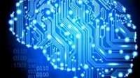 Intelligence artificielle? Le fonctionnement d'internet ressemble à celui du cerveau, selon des chercheurs de l'USC