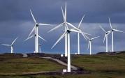 Les éoliennes déclenchent une réaction de peur dans le cerveau