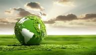 «Verdissement»: davantage de CO2 entraîne une plus forte croissance du feuillage, selon une nouvelle étude