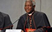 Le cardinal Peter Turkson nommé à la tête du nouveau dicastère écologiste pour le «Développement humain intégral»
