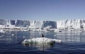D'après des experts, la glace maritime arctique aurait dû fondre entièrement avant septembre 2016…