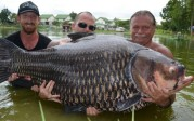 La photo : 90 minutes de batailles pour la plus grosse carpe du monde : 222 pounds (101 kilos), …