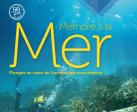 Exposition: ARCHEOLOGIE/HISTOIRE Mémoire à la Mer, plongée au cœur de l'archéologie sous-marine ♥♥