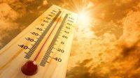 Le billetEntre deux COP: réchauffement, trou d'ozone et autres phénomènes extrêmes du mensonge médiatique à prétention scientifique