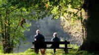 Le système anglais de retraites par capitalisation sauvé par la baisse de l'espérance de vie?