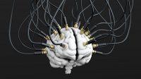 DARPA, l'agence scientifique de l'armée américaine, veut hacker les cerveaux pour améliorer l'apprentissage