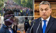 Orban, pas de compromis avec Bruxelles sur les migrants:<br>le compromis de Luxembourg