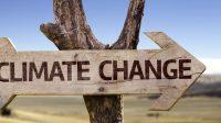 Le Bureau australien de la météorologie (BOM) est allergique aux records de froid:il préfère les censurer