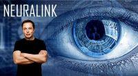 Depuis le 15 août, Neuralink, la start-up destinée à relier l'ordinateur au cerveau humain a levé 27 millions de dollars