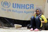 L'agence de l'ONU pour les réfugiés, l'UNHCR publie ses statistiques sur l'immigration via la Méditerranée