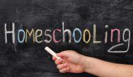 """Merci au """"homeschooling"""":<br>aux Etats-Unis, l'école à la maison épargne 22 milliards de dollars aux contribuables par an"""