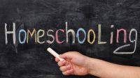 """Merci au """"homeschooling"""":aux Etats-Unis, l'école à la maison épargne 22 milliards de dollars aux contribuables par an"""