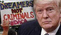 Etats-Unis – Donald Trump veut une amnistie pour les 800.000 immigrés illégaux du programme DACA