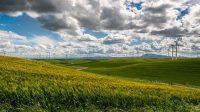 Microsoft vient d'acheter toute la production d'un nouveau parc éolien en Irlande pour les 15 années à venir
