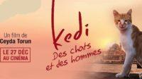 DOCUMENTAIRE Kedi, des chats et des hommes ♥♥
