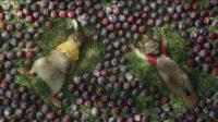 Le nouveau film «Pierre Lapin» suscite l'ire des victimes d'allergies – on ne rit pas de tout
