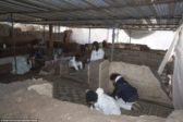 La photo: une villa romaine de luxe découverte sous le métro italien