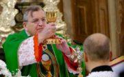 cardinal Burke Cardinal-Burke-envisage-excommunication-resistance-enseignements-doctrine-Eglise-181x112