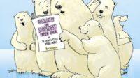 Les ours polaires ne sont pas en danger, affirment les scientifiques Susan Crockford et Mitchell Taylor, déchaînant les climato-alarmistes