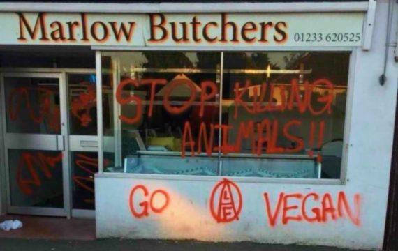 Végans incendie boucherie Marlow Kent ALF Animal Liberation Front