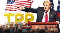 La réintégration du Partenariat transpacifique (TPP) envisagée par Trump, un premier pas vers une intégration Etats-Unis-Chine-Russie?