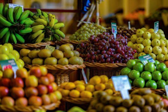 réchauffement climatique réduire production agricole