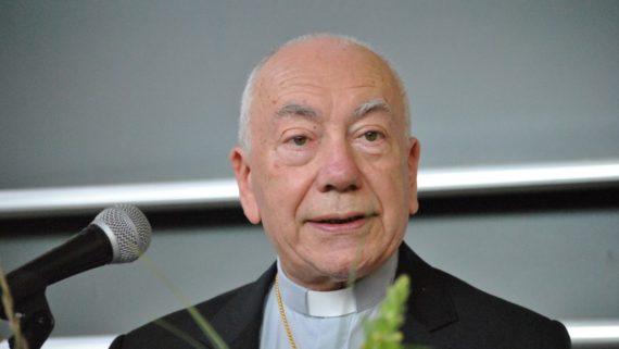obligation prendre soin Création droit canonique cardinal Coccopalmerio