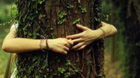 Les féministes écosexuelles font l'amour aux arbres