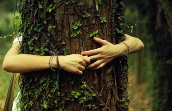 Féministes Ecosexuelles Amour Arbre