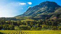 La procédure de saisie des terres des fermiers blancs en Afrique du Sud a commencé