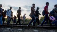 La propagande des élites pour convaincre les peuples que les migrants sont une bonne chose
