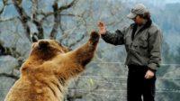 Utiliser l'intelligence artificielle pour décoder le langage animal et «traduire» ce que les animaux disent de nous