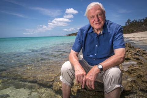 David Attenborough ralentissement croissance population